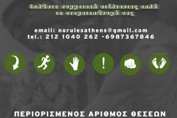59369303_665111730590206_8244134547227148288_o